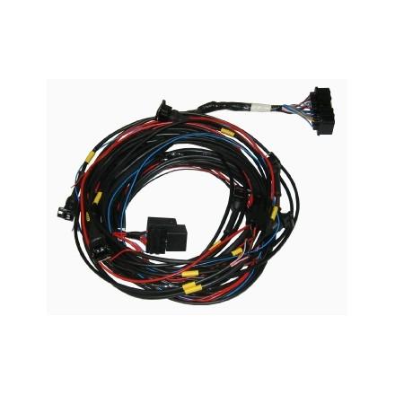 Omex 600 Basic Road Spec Loom