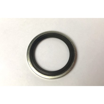 """Bonded Seal 1 5/16ID for 1""""BSP"""